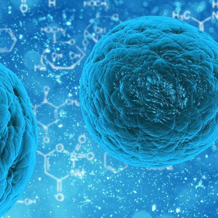 Streptokokki ja enterokokki – hyödyllisiä vai haitallisia bakteereja?