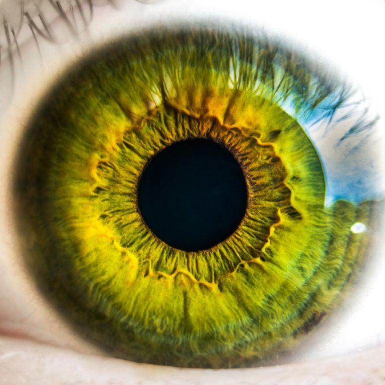 SILMIEN TERVEYS – mikä heikentää näköä ja mikä on hyväksi silmille?